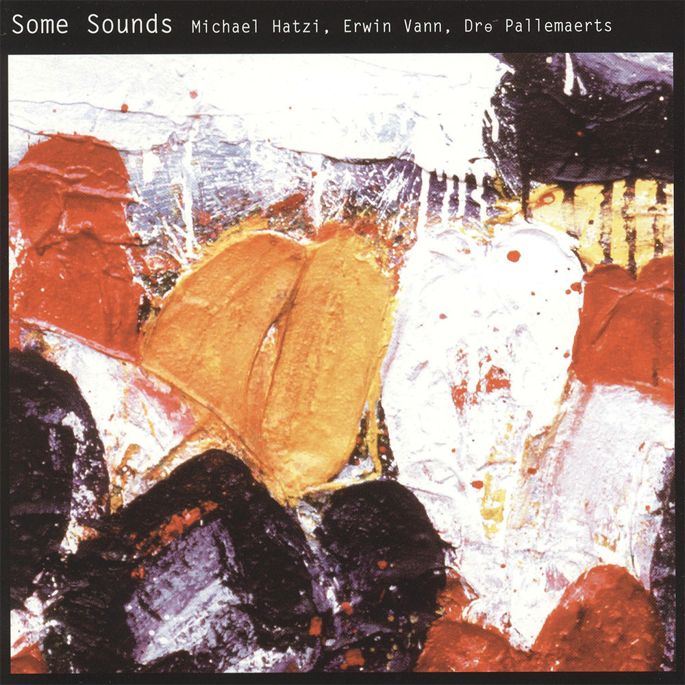 Michael-Hatzi,-Erwin-Vann,-Dre-Pallemaerts---Some-Sounds